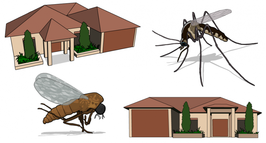 Some more illustrations from Elders Pest Control project